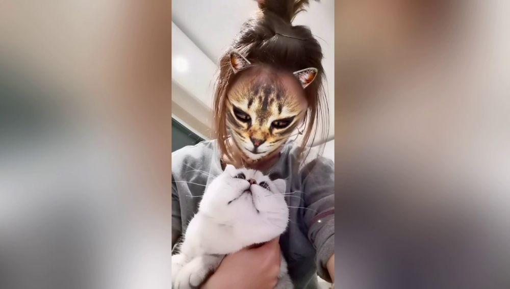 VÍDEO: Estos gatos flipan con el filtro que convierte a sus amos en felinos