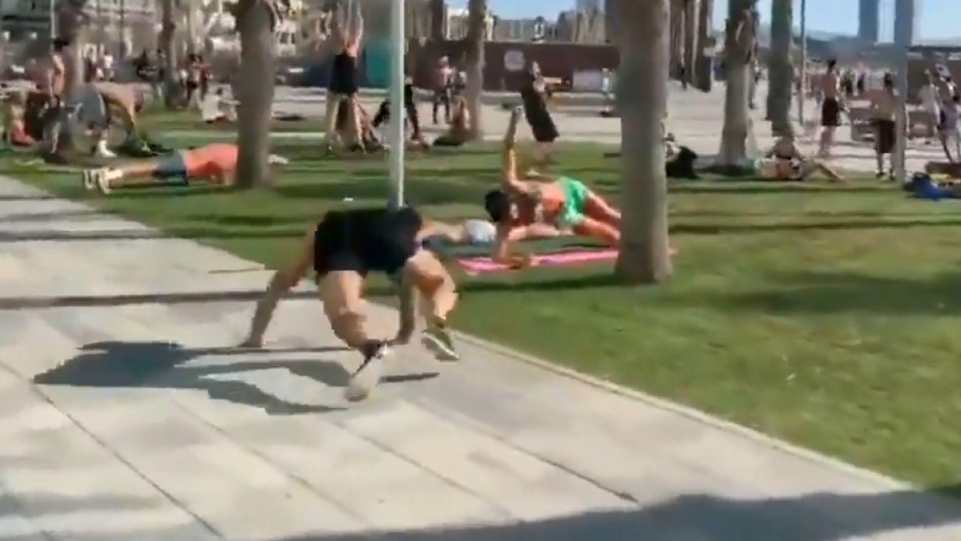 """El """"avistamiento"""" del lagarto de la Barceloneta"""