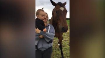 VÍDEO: Acerca a su bebé a un caballo y le vomita en la cara
