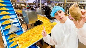 Nil supervisando sus patatas fritas