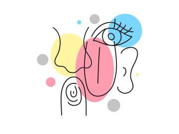 Ilustración 5 sentidos