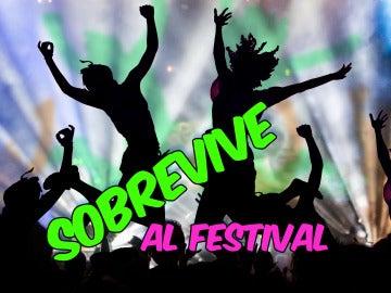 Cómo sobrevivir a un festival