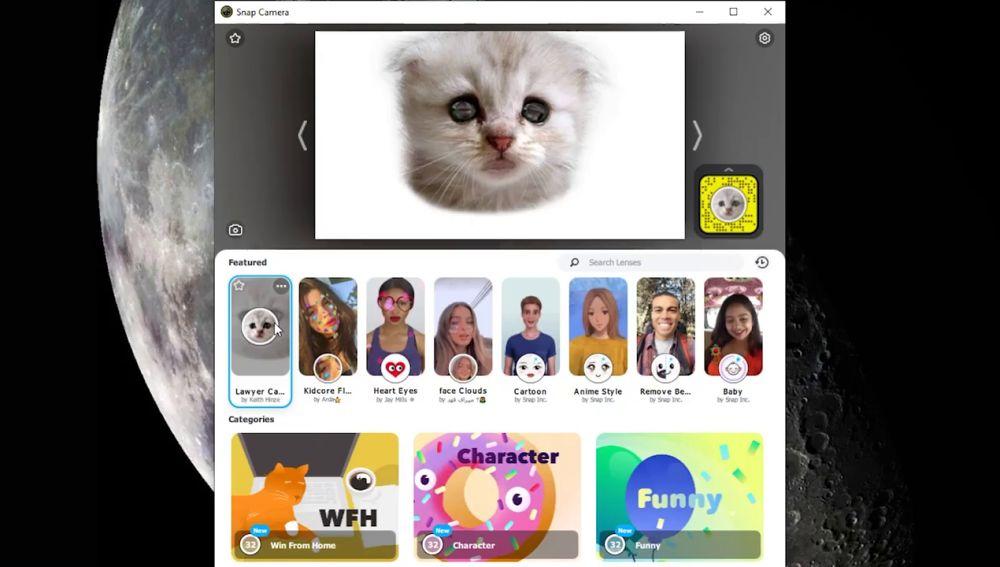 Cómo conseguir el filtro de gato que se ha hecho viral en Zoom