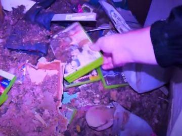 Youtubers exploradores rescatan 80.000 en videojuegos de una casa abandonada